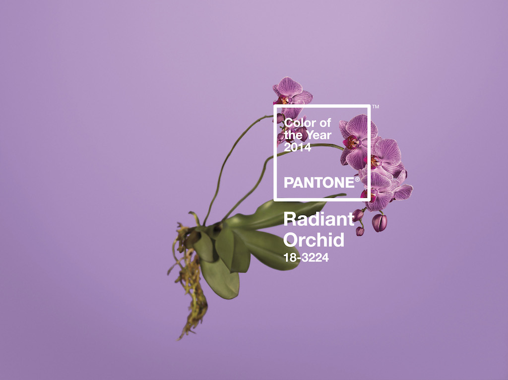 Radiant-Orchid-Pantone-18-3224